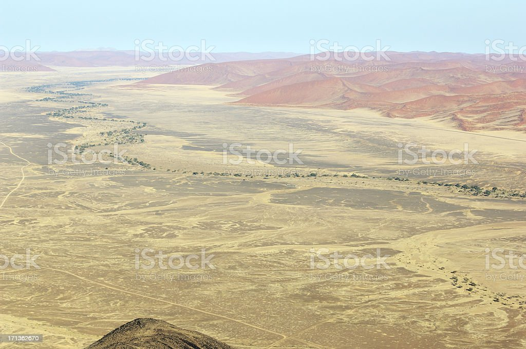 Trees inmiddle the desert and red dunes stock photo