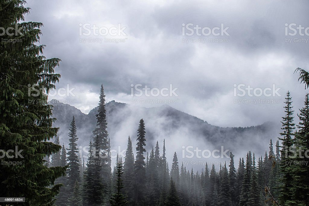 Trees, mountains, and clouds stock photo