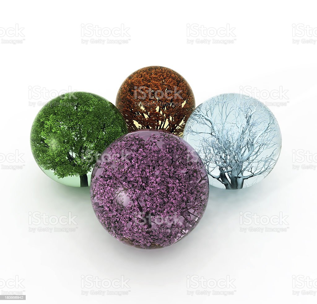 trees of four seasons in the drops stock photo