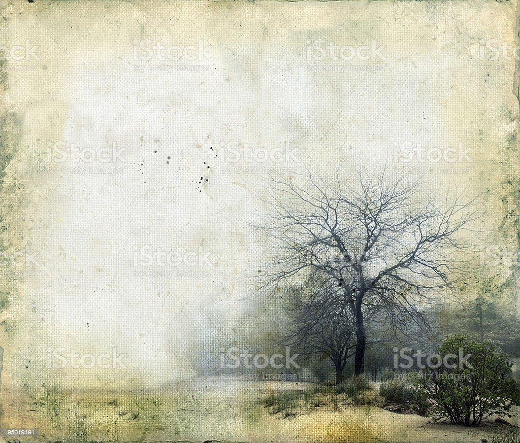 Trees on a Grunge Background stock photo