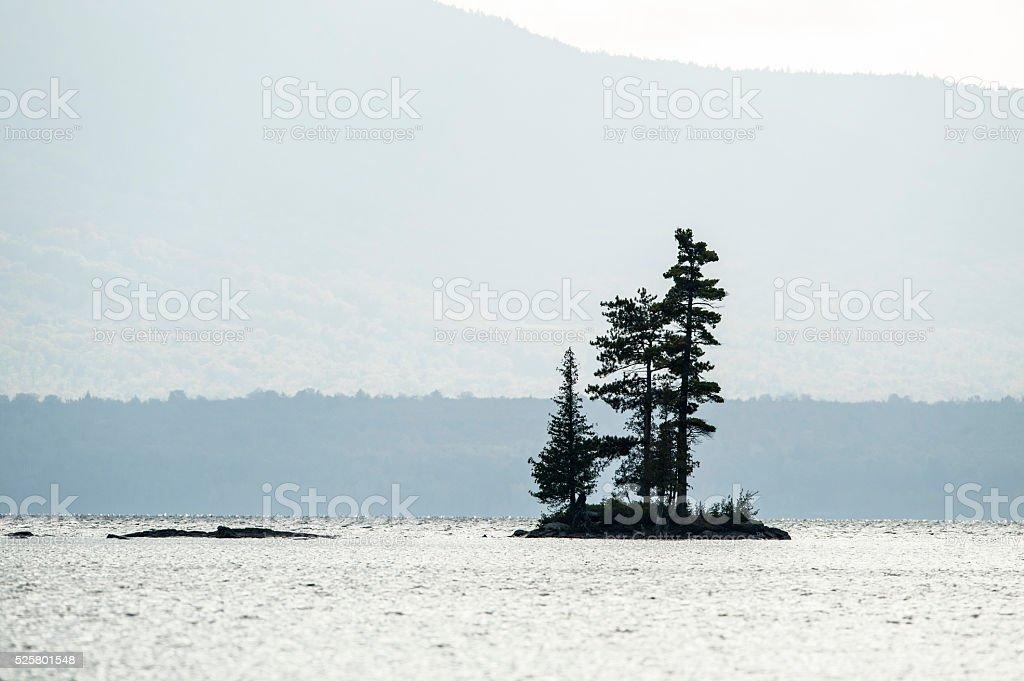 Trees on small island stock photo