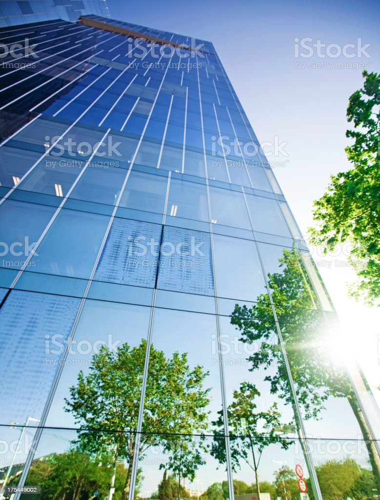 Trees reflected on building stock photo