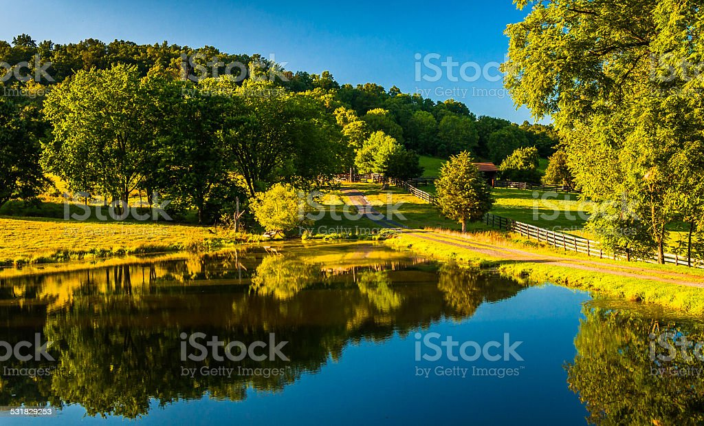 Trees reflecting in a pond in the Shenandoah Valley, Virginia. stock photo