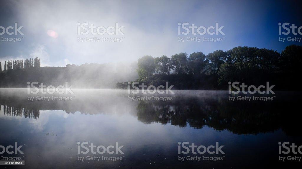 trees reflecting on water surface. lake karapiro, new zealand stock photo