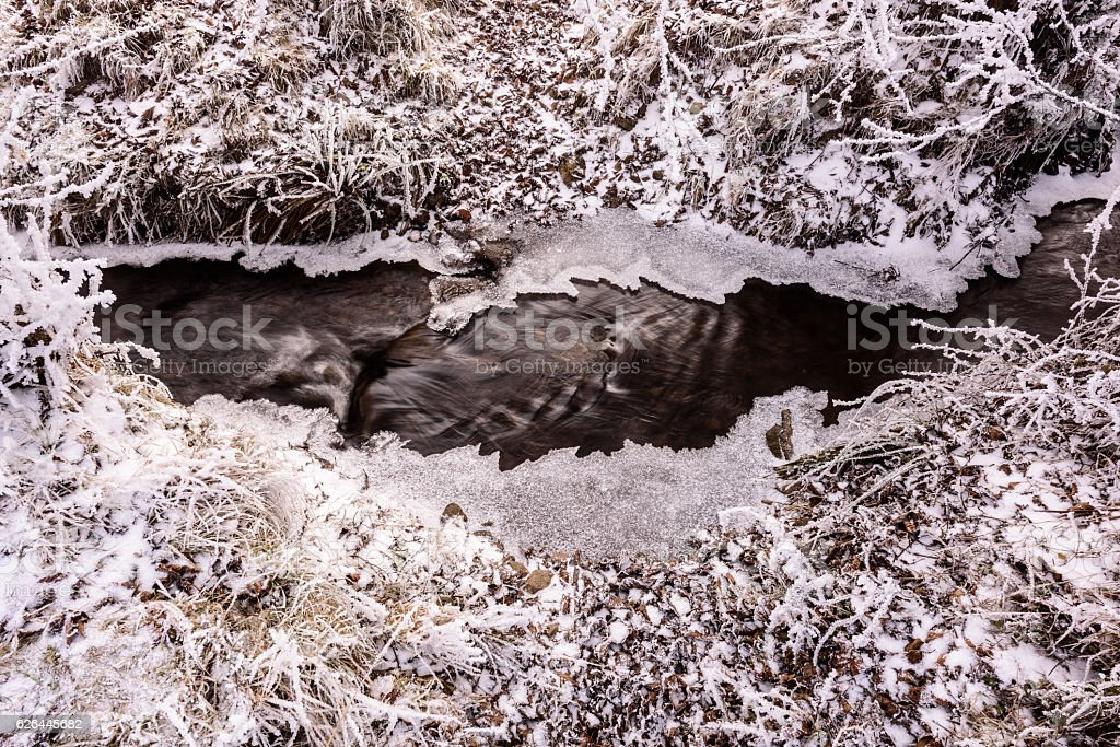 Trees rimed in winter and creek. stock photo