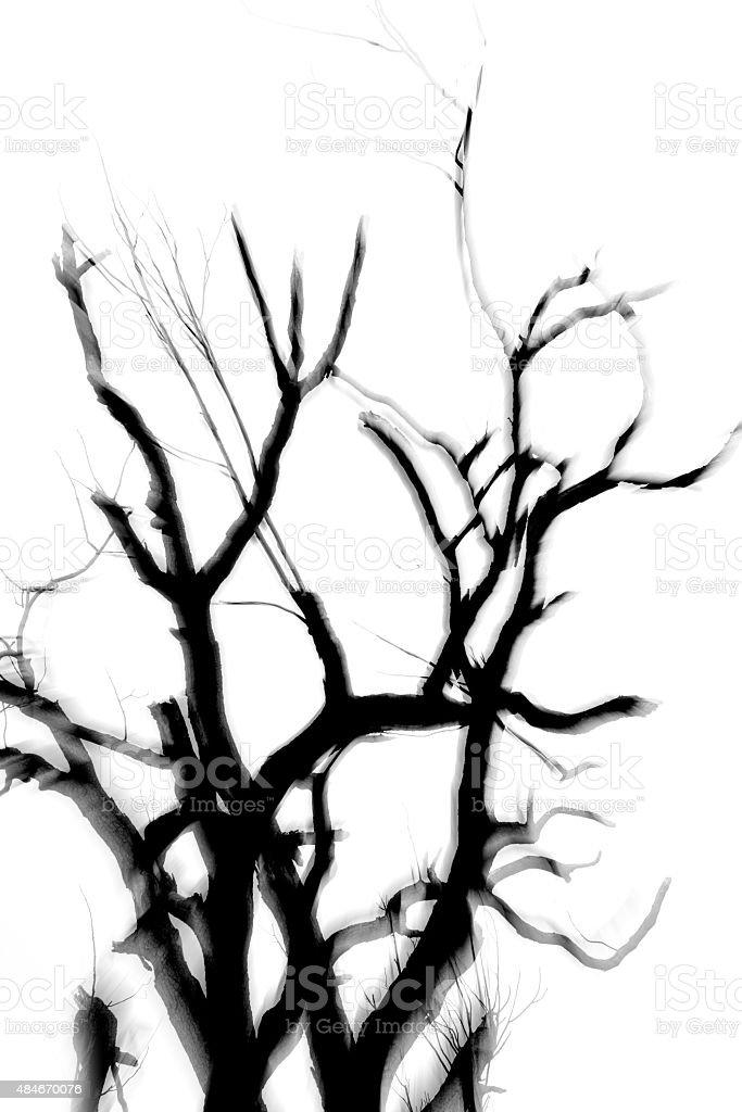 Trees trunk take multiple exposure stock photo