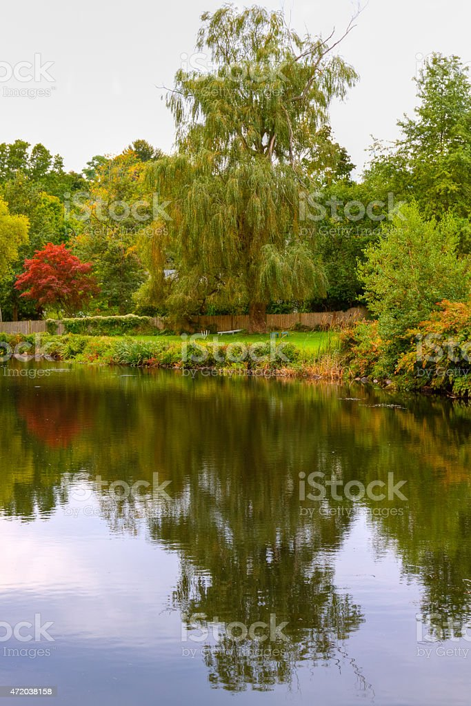 Trees with autumn foliage reflected in Town Brook, Plymouth, Massachusetts stock photo