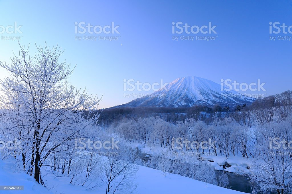 Trees with frost,the moon and Mt.Yotei stock photo