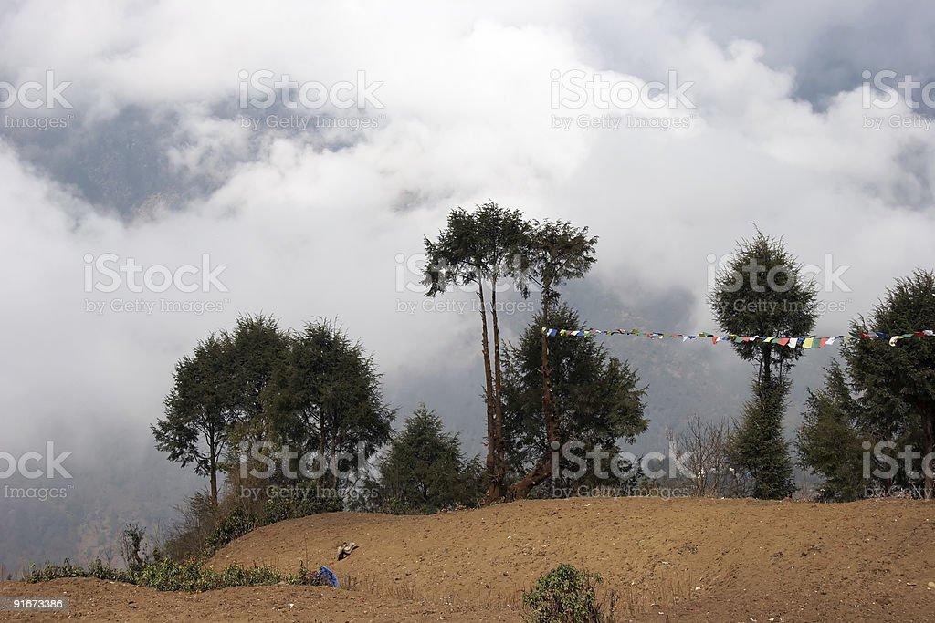 Trees with prayer flags, Everest trek, Nepal stock photo