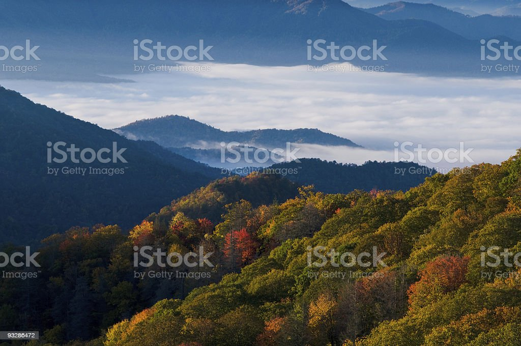 Treetops under cloudy sky in Smokey Mountains National Park stock photo