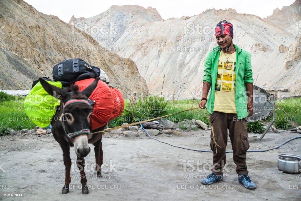 Trek guide with packing donkey loading trekkers backpacks in Hangkar stock photo