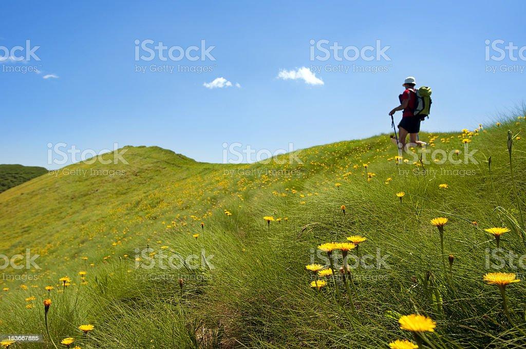 Trekking in the Alps, Italy royalty-free stock photo