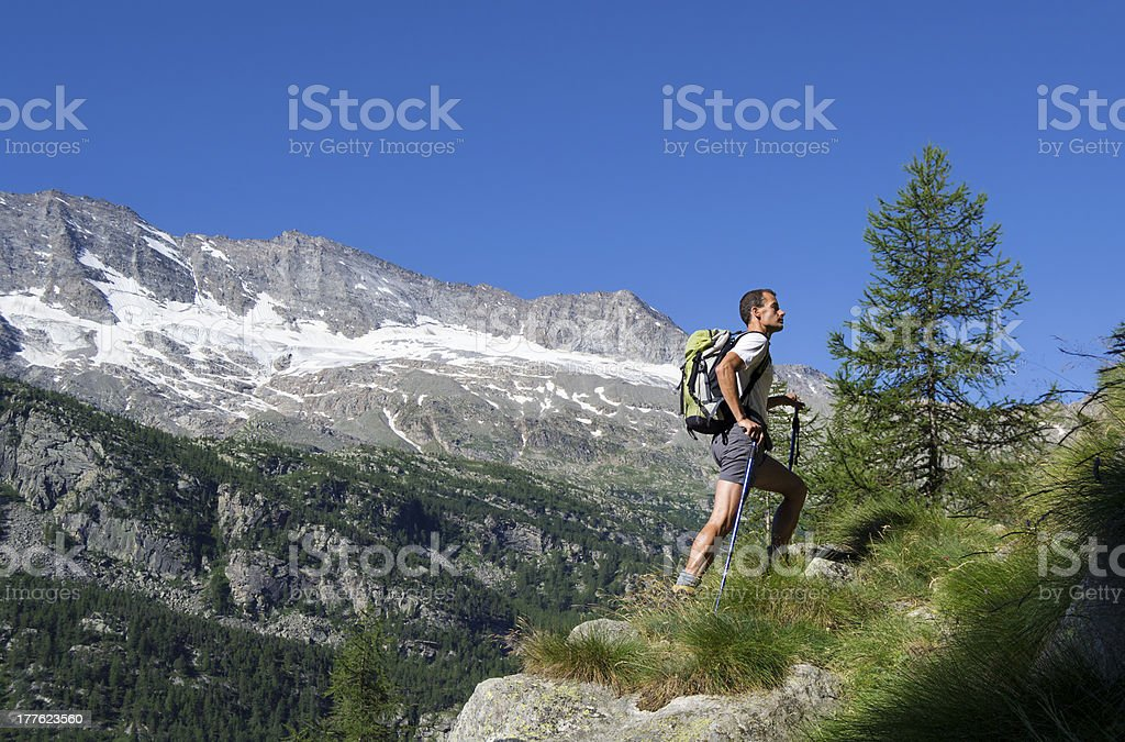 Trekking in the Alps royalty-free stock photo