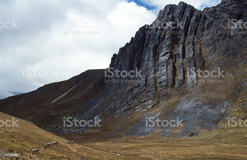 Trekking in the Andes royalty-free stock photo