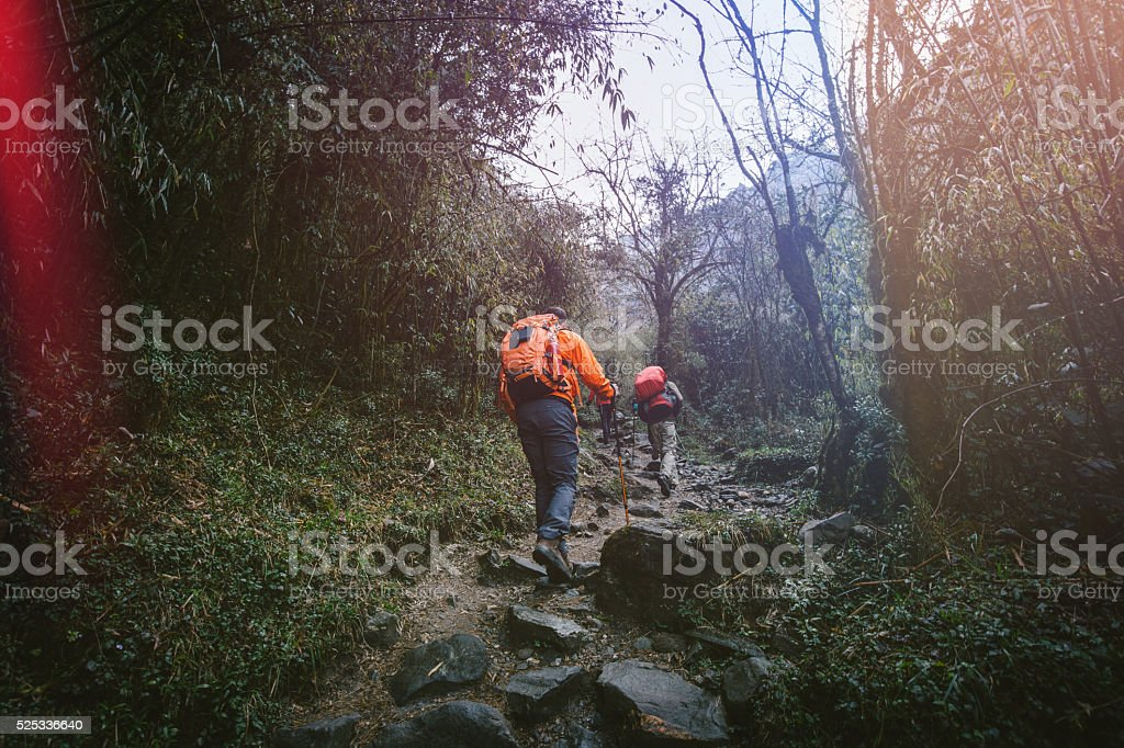 Trekking on Himalayas stock photo