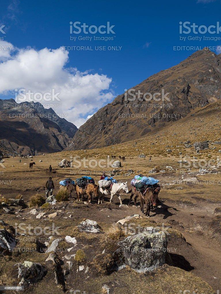 Trekking Salcantay Mountain, Peru royalty-free stock photo