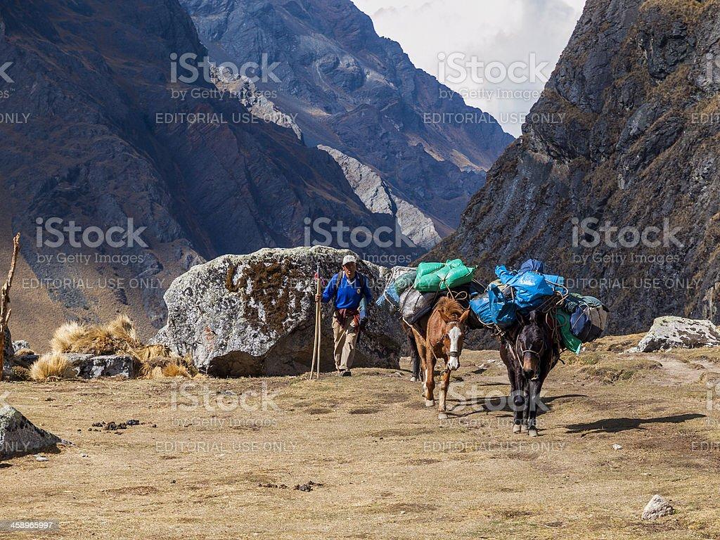 Trekking Salcantay Mountain, Peru stock photo