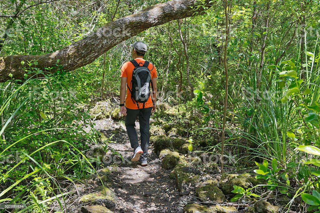 Trekking the Less Travelled Paths stock photo