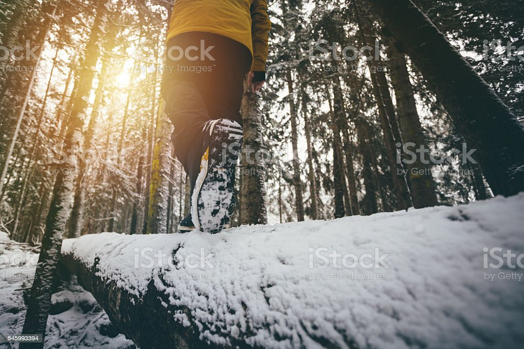 Trekking through the winter forest stock photo