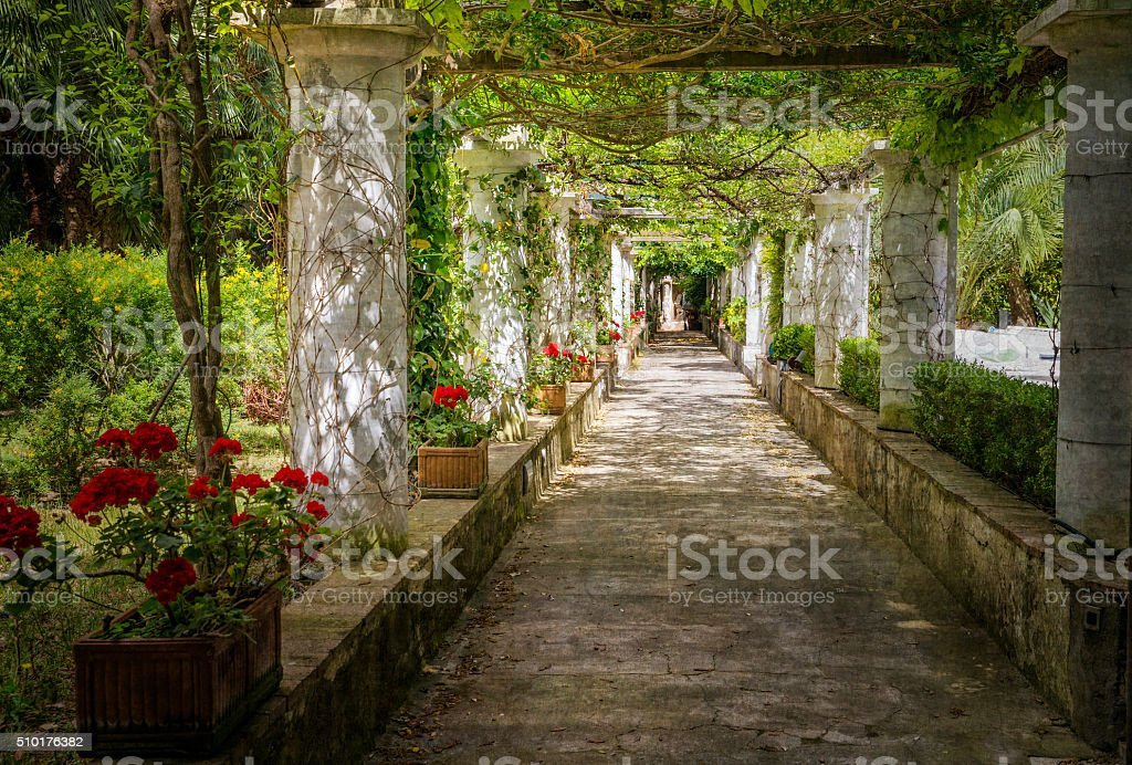Trellis in Italian Garden stock photo