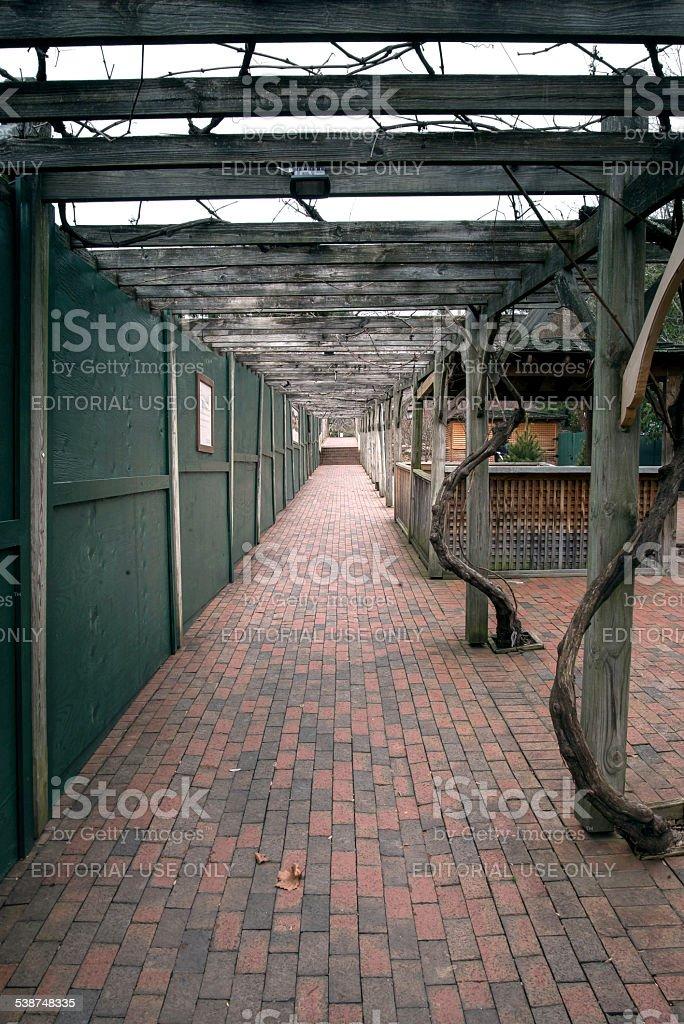 Trellis way at the Biltmore Estate stock photo
