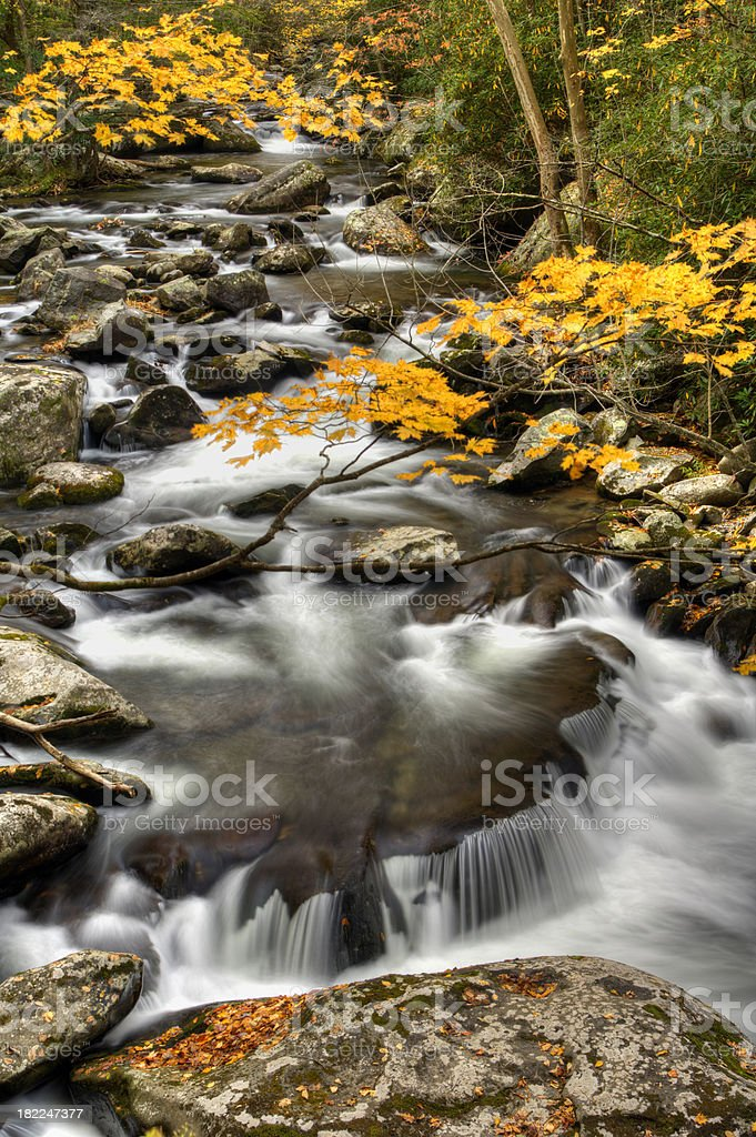 Tremont Cascades in Great Smoky Mountains stock photo