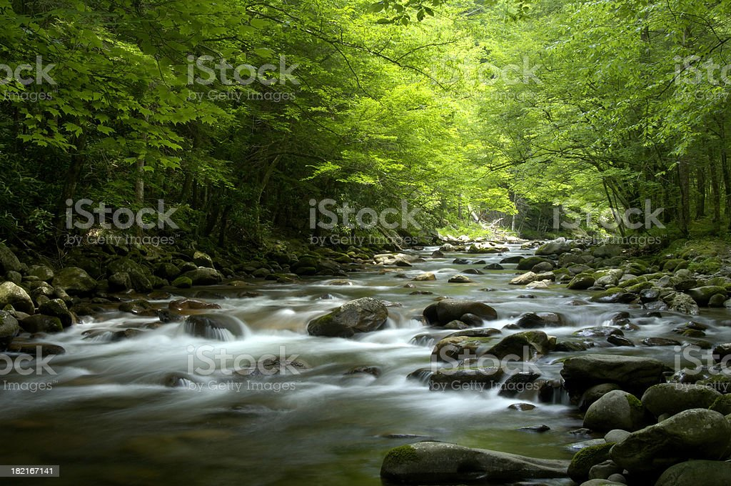 Tremont, Little Pigeon River Great Smoky Mountains National Park royalty-free stock photo