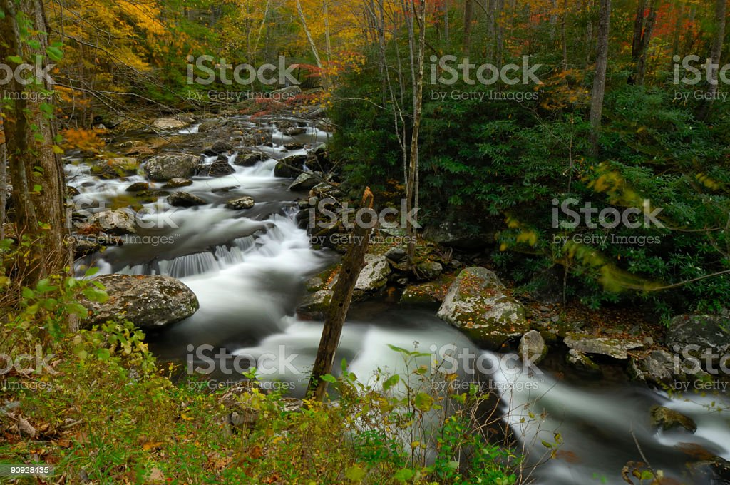 Tremont Stream in Great Smoky Mountains National Park stock photo