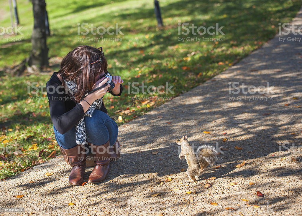 Trendy Woman with Retro Film Camera Photographs a Squirrel royalty-free stock photo