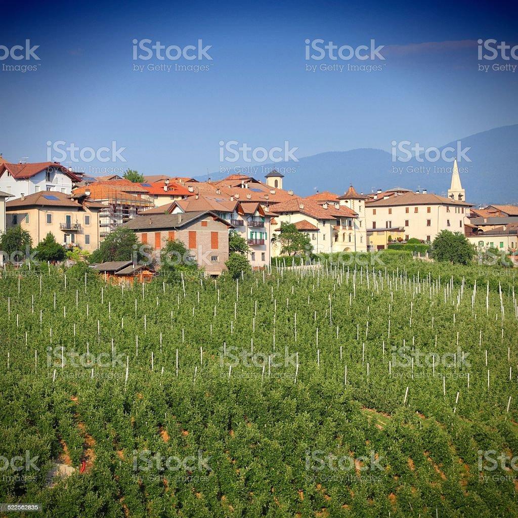Trentino, Italy stock photo