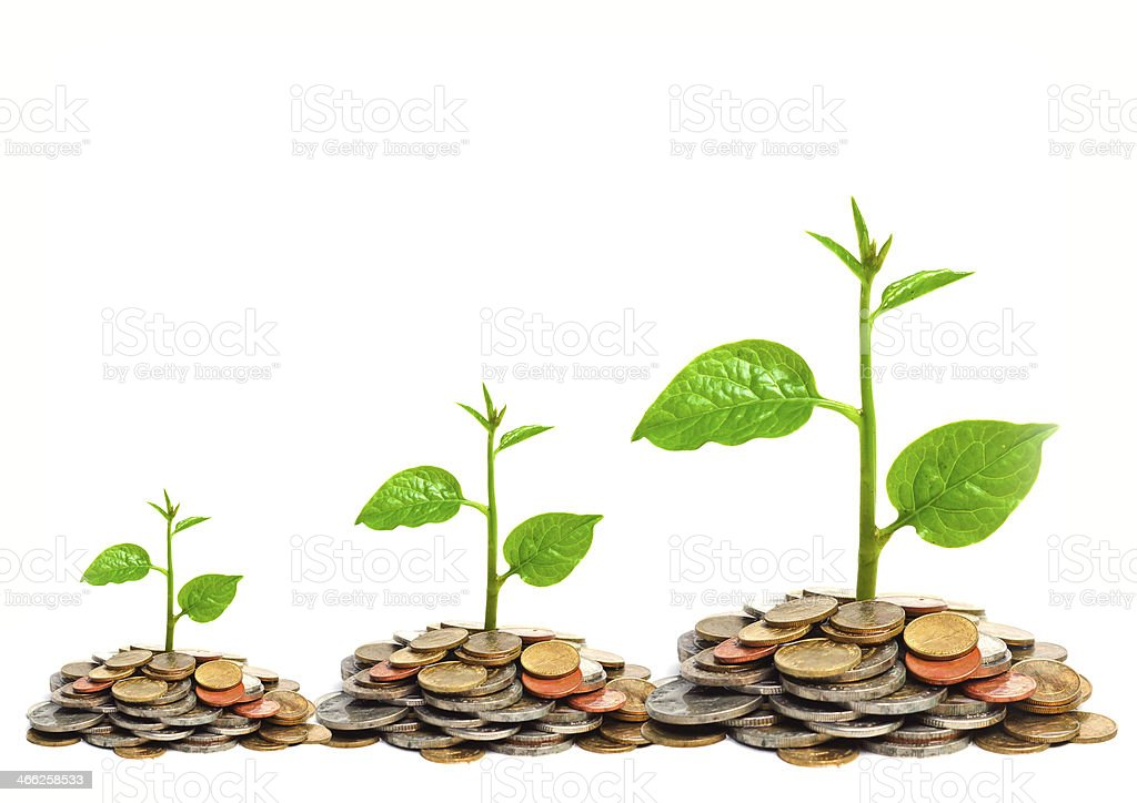 tress growing on coins stock photo