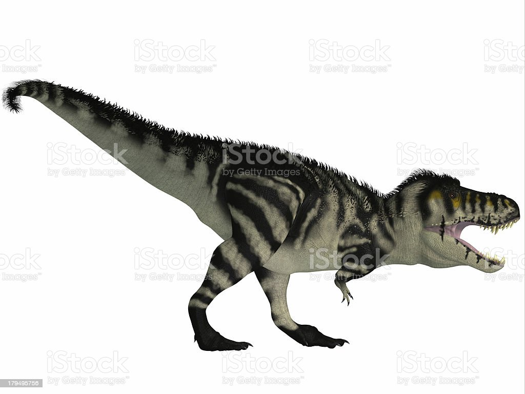 T-Rex Black and White royalty-free stock photo