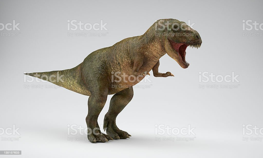 Trex royalty-free stock photo