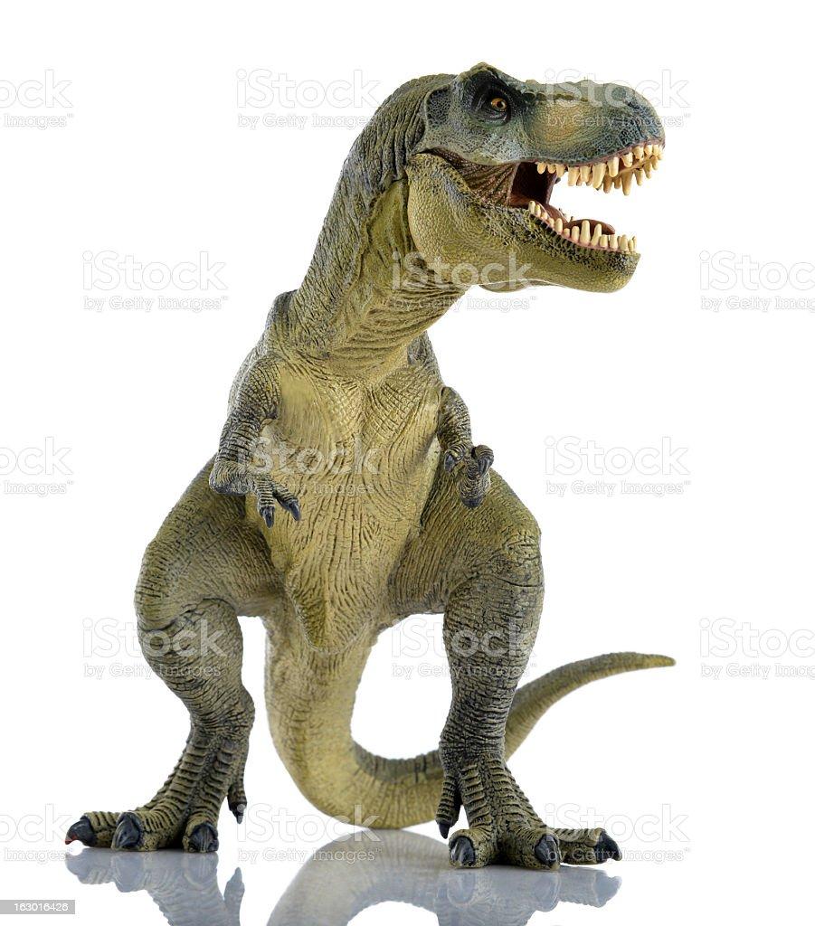 T-rex stock photo