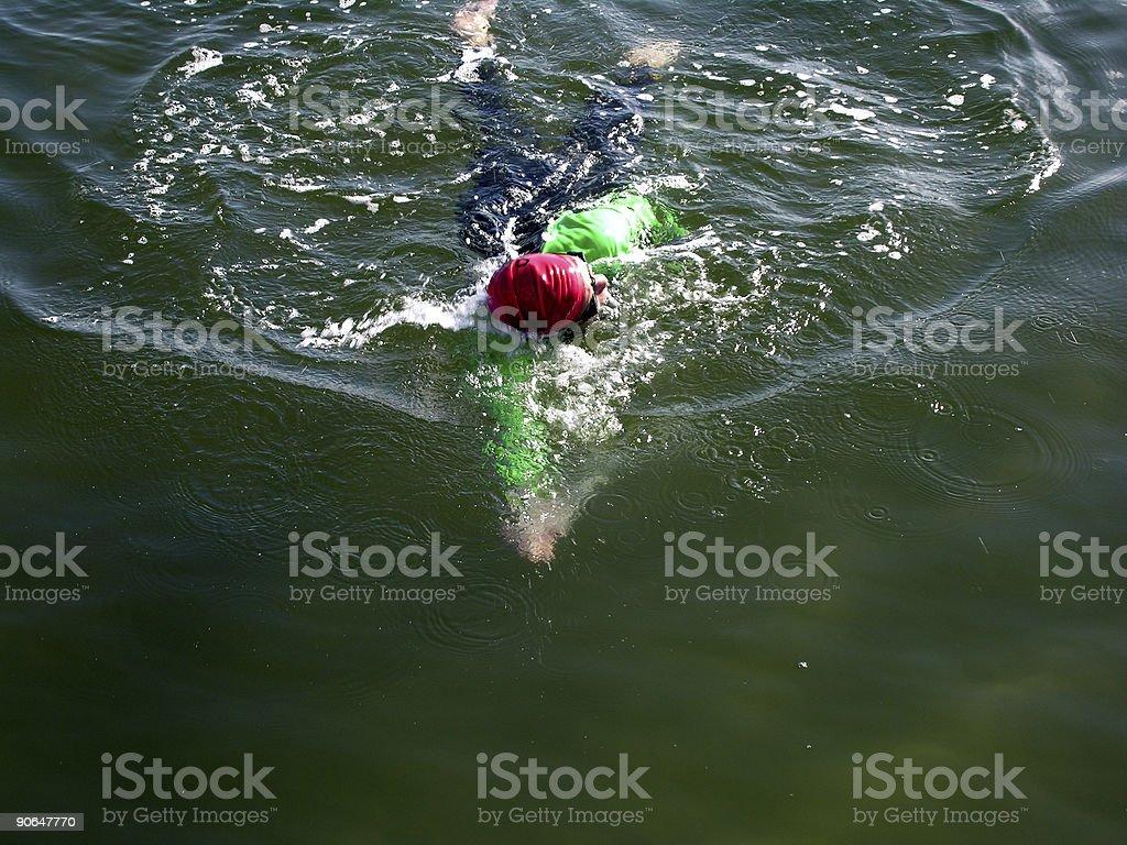 Triathlon Swimmer royalty-free stock photo