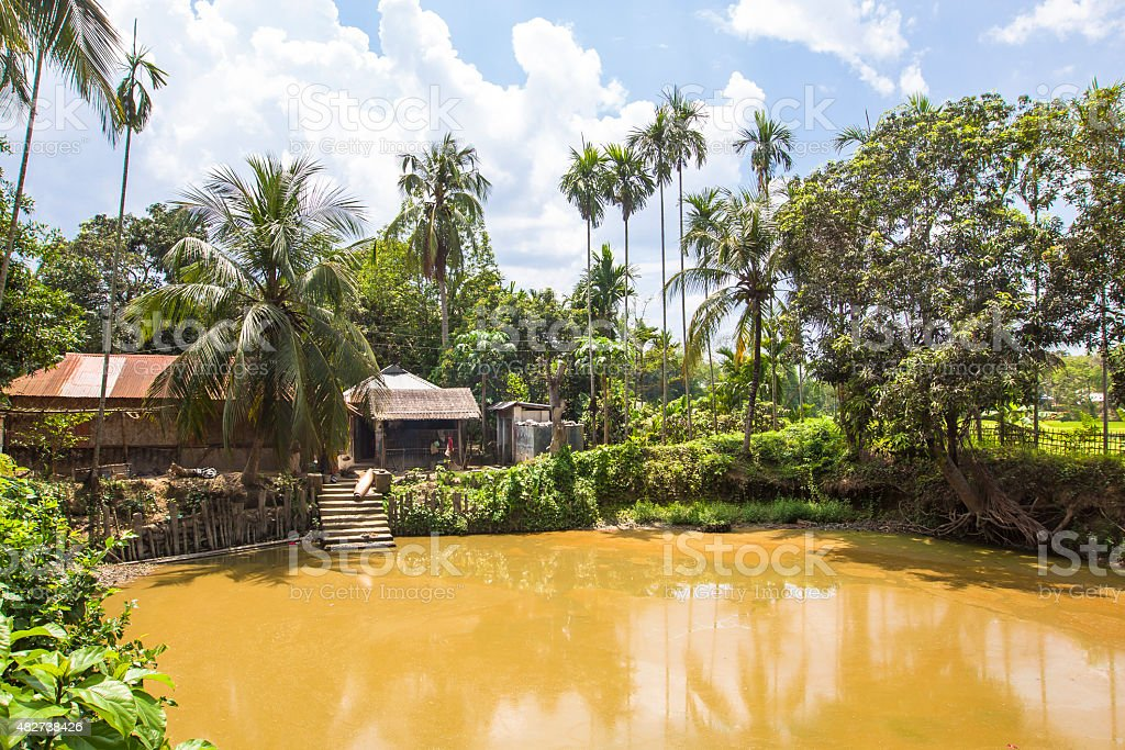 Tribal house around a pond, in village of Tripura, India. stock photo