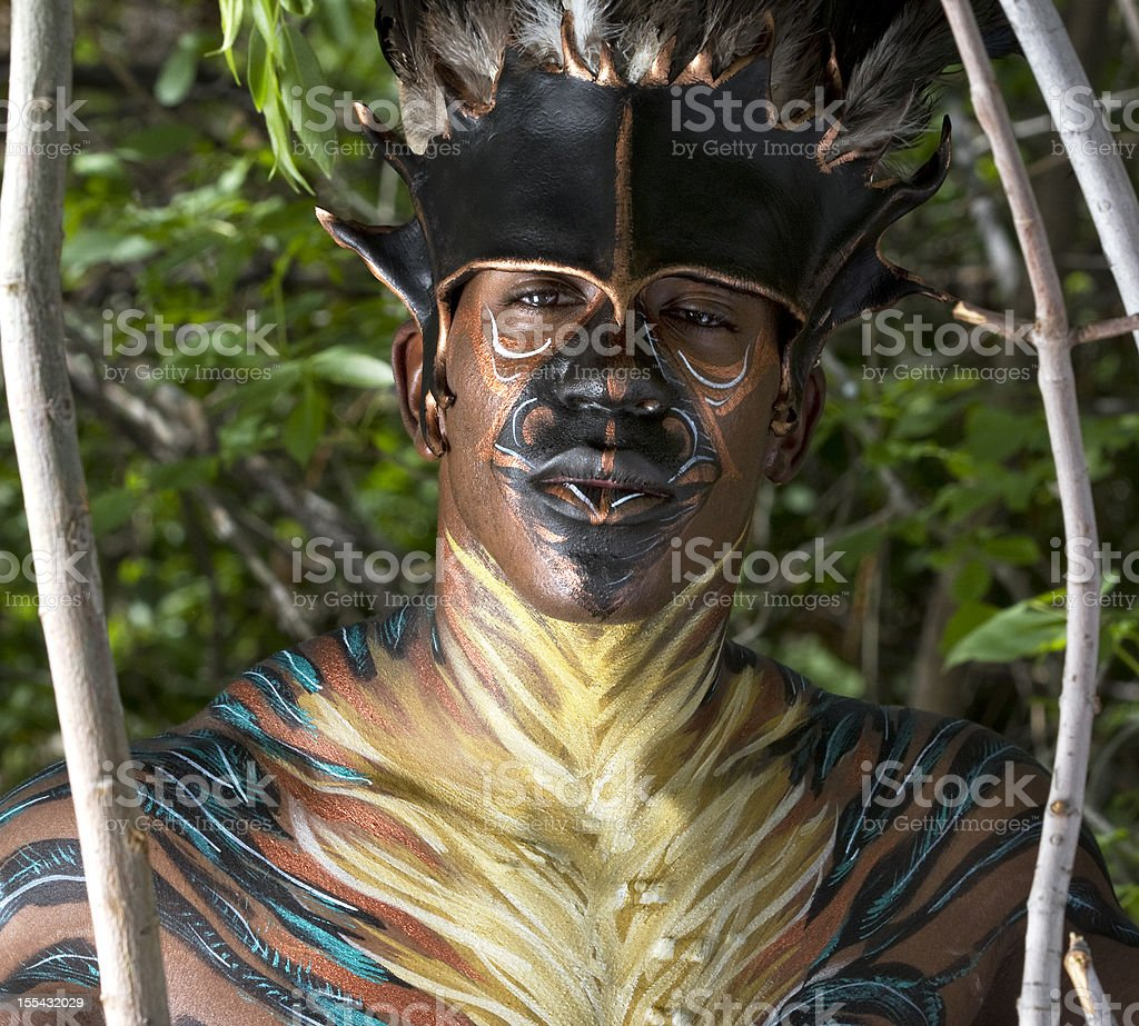 Tribal King in Painted Feathers stock photo