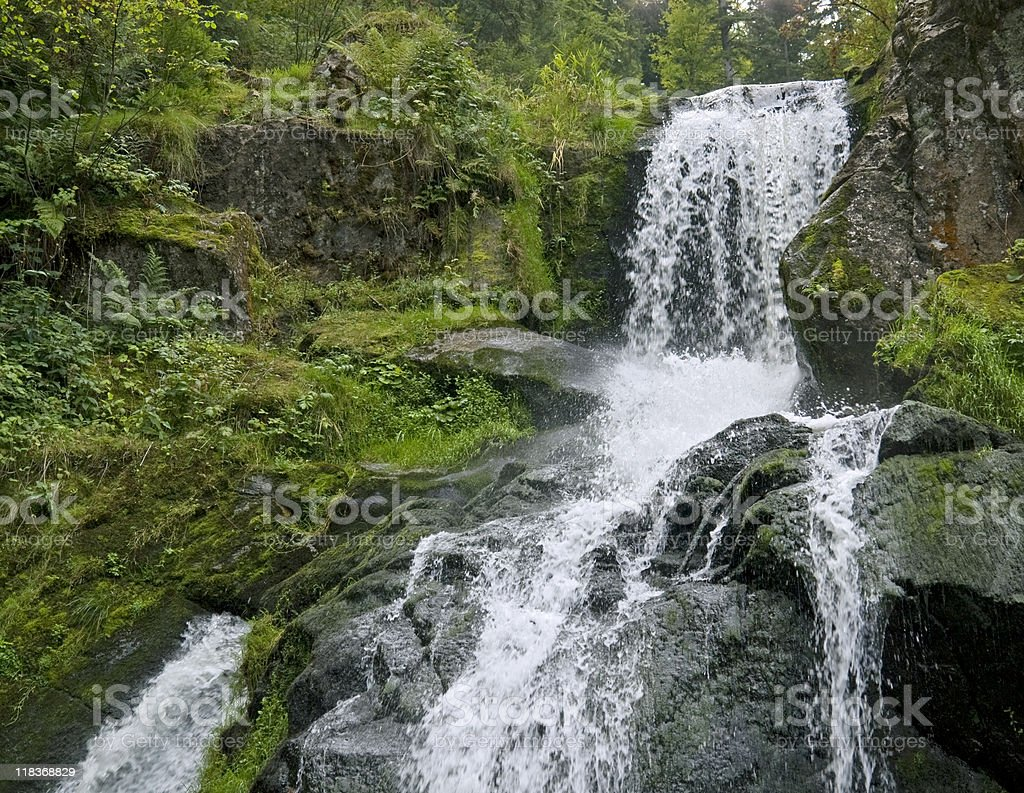 Triberg Waterfalls in green ambiance stock photo