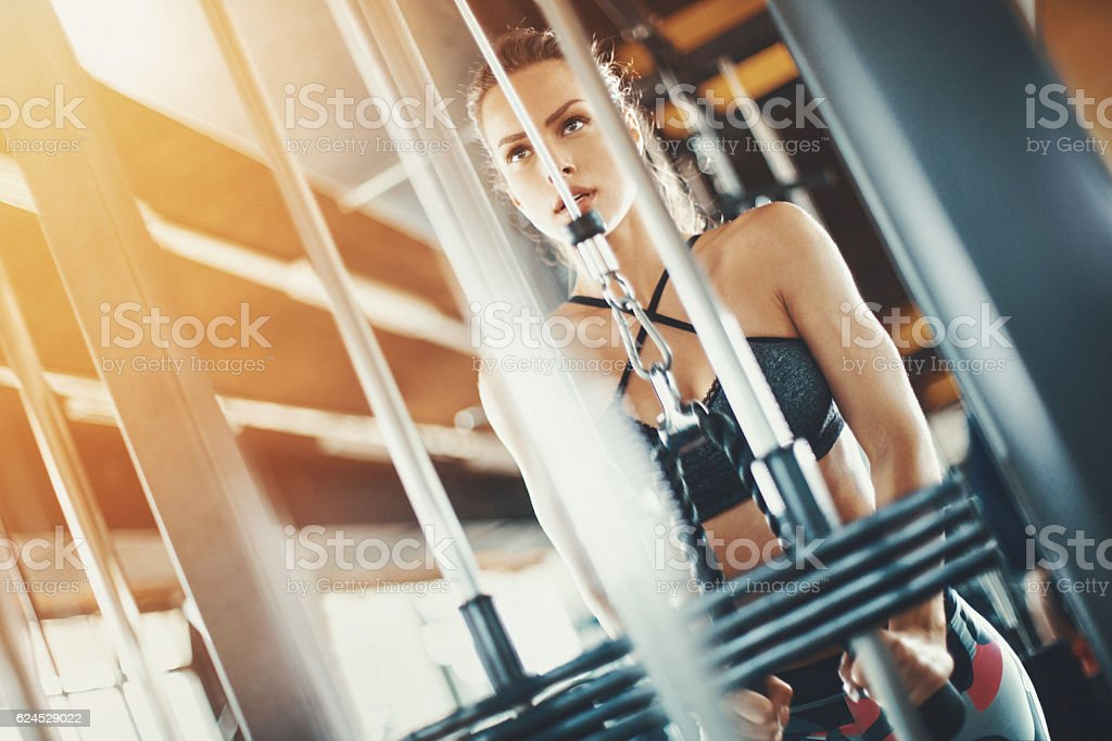 Triceps workout. stock photo