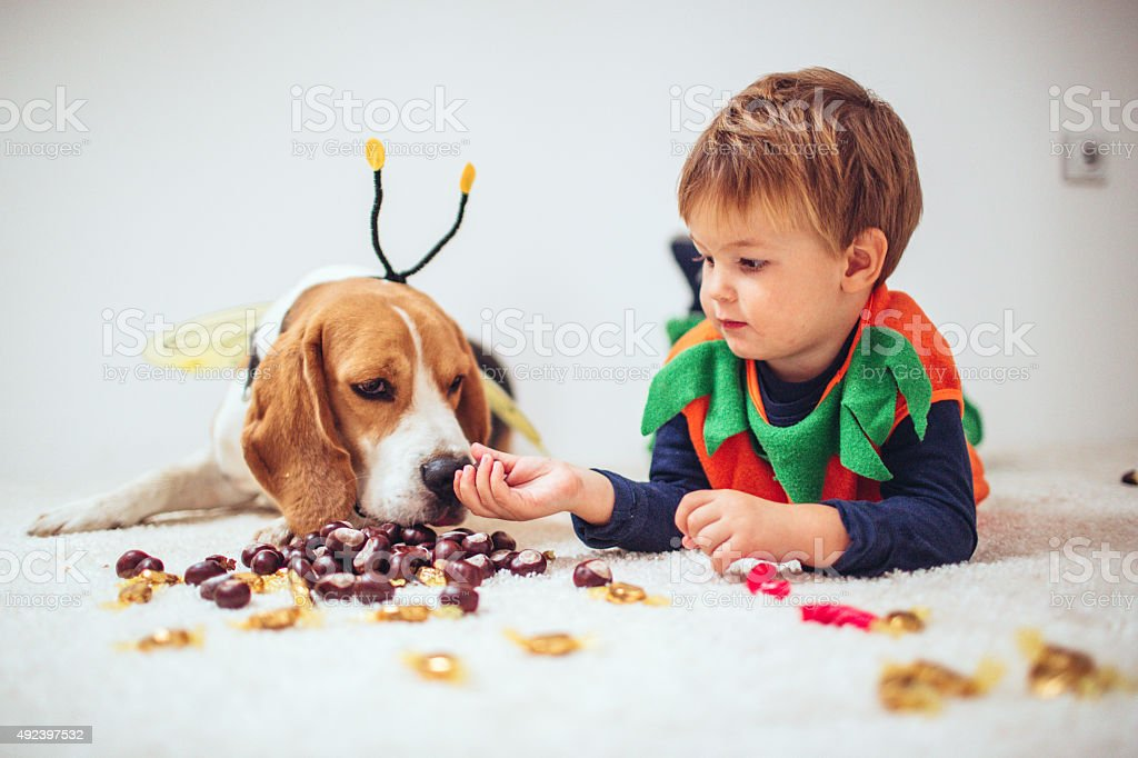 Trick and treats stock photo