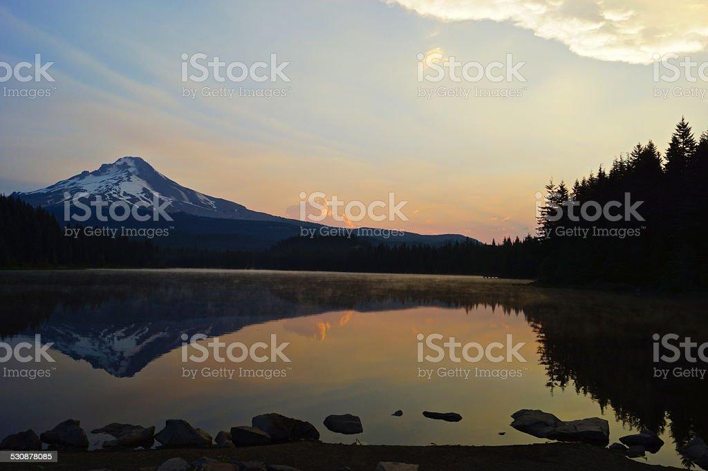 Trillium Sunrise stock photo