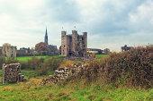 Trim Castle ruins in Ireland