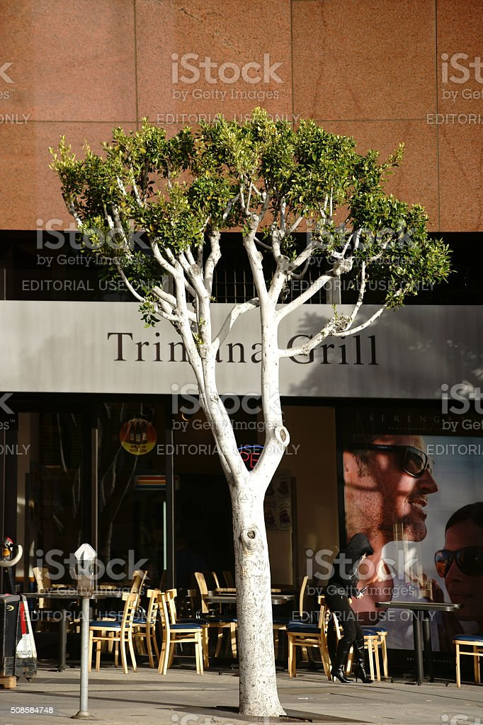 Trimana Grill Los Angeles stock photo