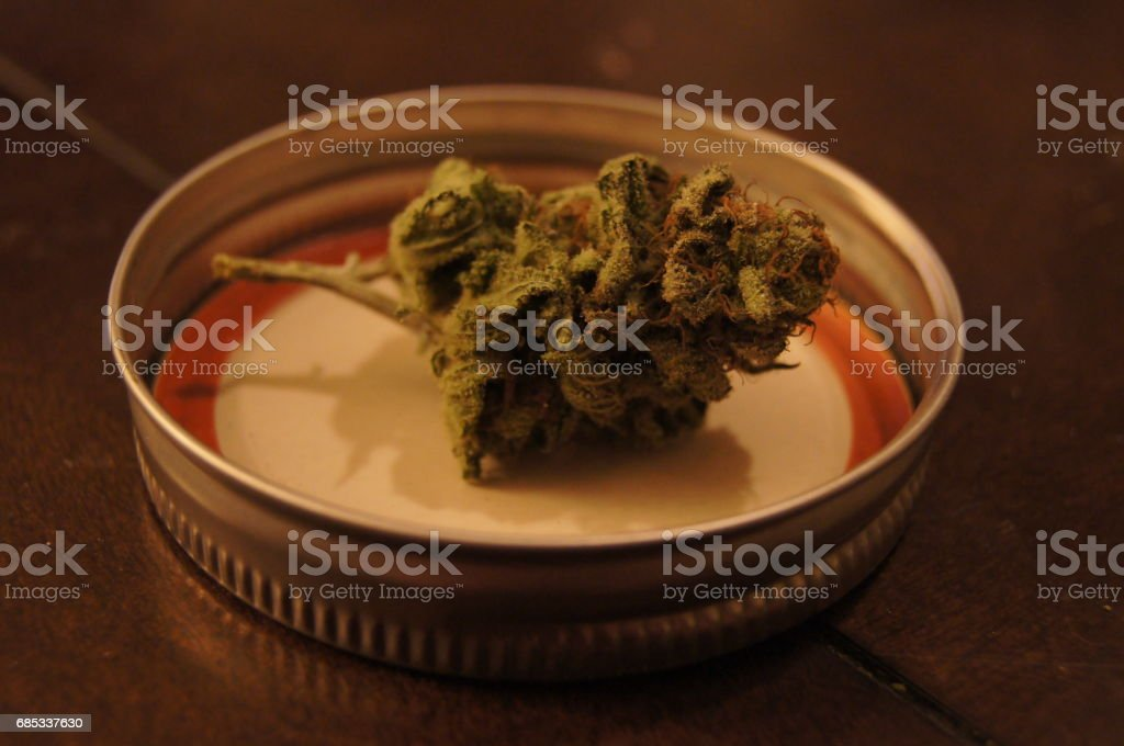 Trimmed Cannabis Bud Displayed on Jar Top stock photo