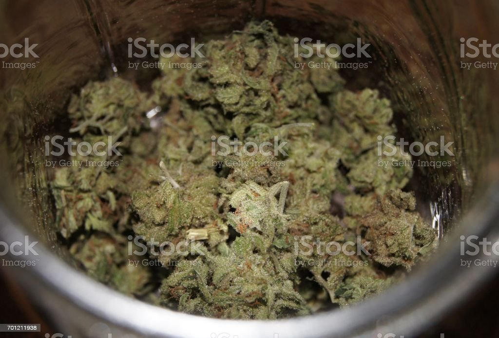 Trimmed Nuggets of Cannabis Buds Curing in a Glass Jar stock photo