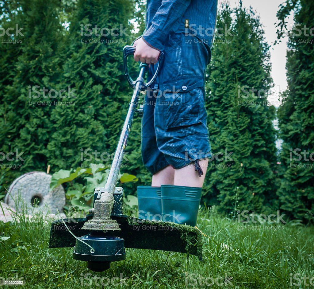 Trimmer stock photo