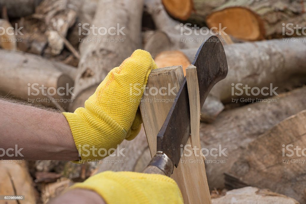 Trimming Firewood with a Billhook Machete stock photo