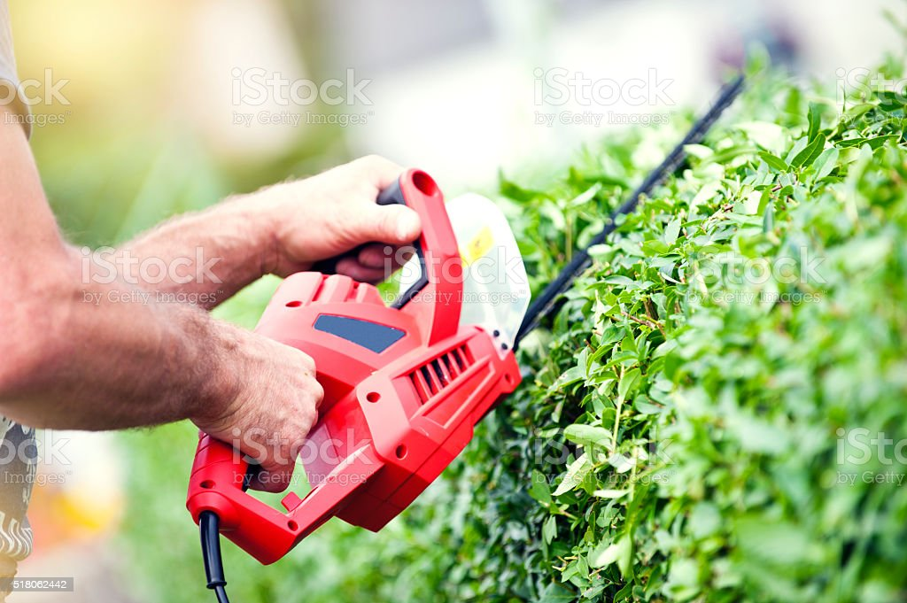 Trimming the Bushes stock photo