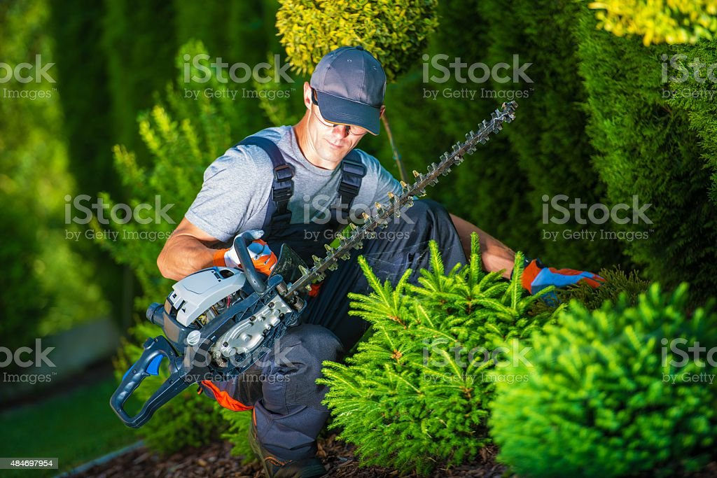 Trimming Work in a Garden stock photo