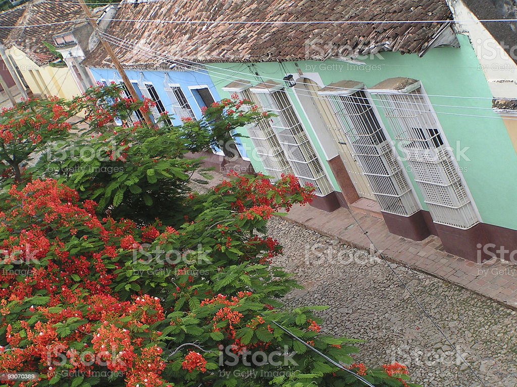 Trinidad royalty-free stock photo